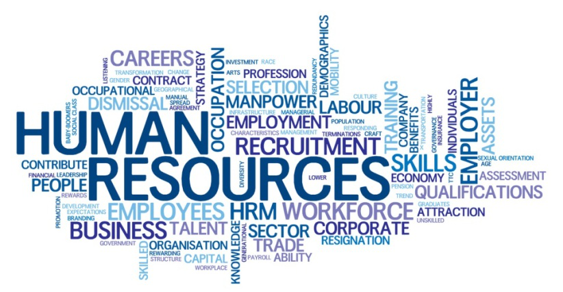 a course on human resource risk Specializing in lowering risk for small businesses through proper training and development, improved legal compliance, and other risk mitigation techniques.
